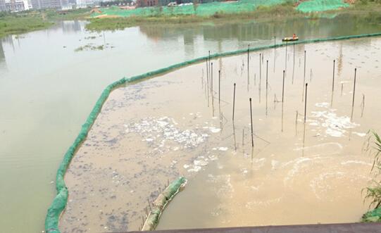 OLT9001 用于景觀湖泊、河流等富營養化處理